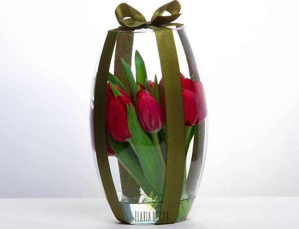 tulipa vermelha.jpg