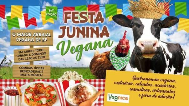 festa vegana.jpg