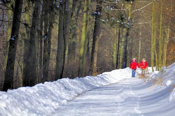 casal neve passeio pixabay