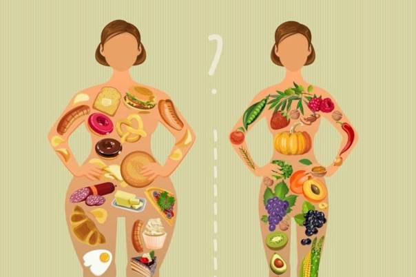 metabolismo alimentacao corpo - karuna