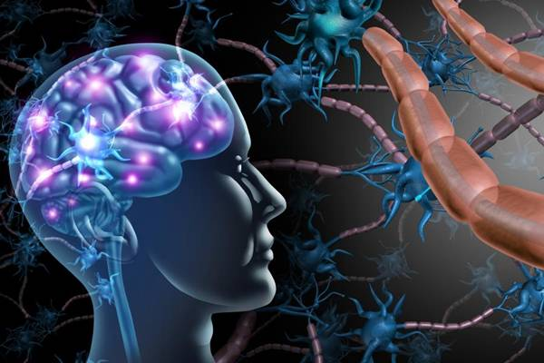 ms_nerves_istock- nervos cerebro esclerose