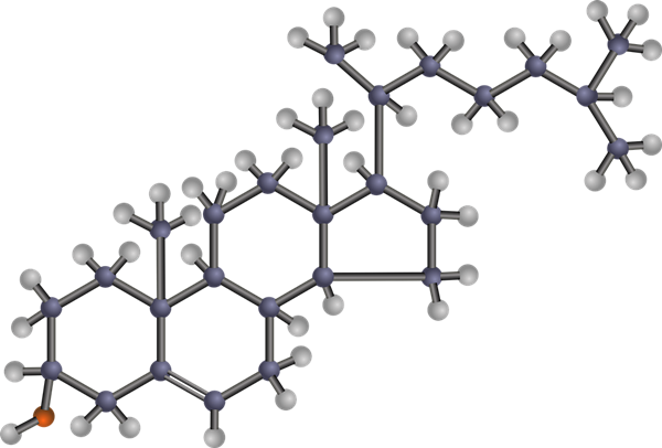 colesterol pixabay