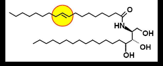 Structural-formula-of- Ceramide-III-B
