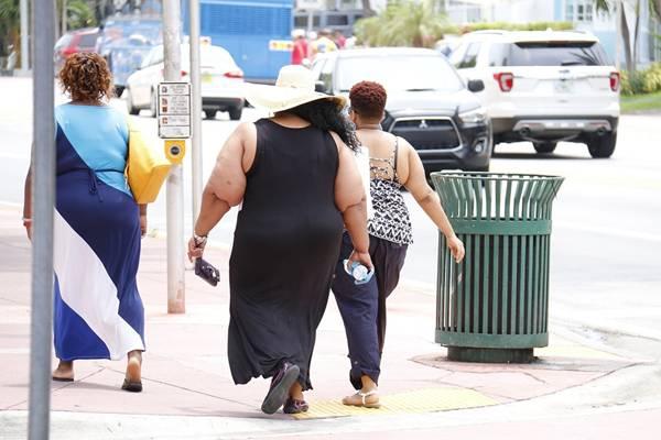 obesidade mulher obesa gorda pixabay