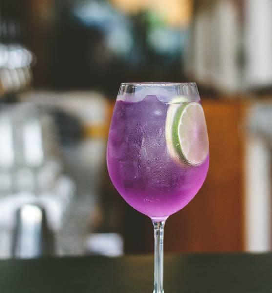 gin-tonica--4015