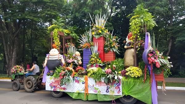 desfile-carnaval-holambra-2019--50-