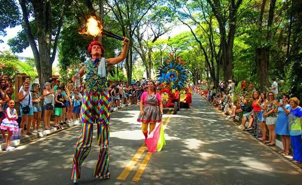 desfile-carnaval-holambra-2019--75-