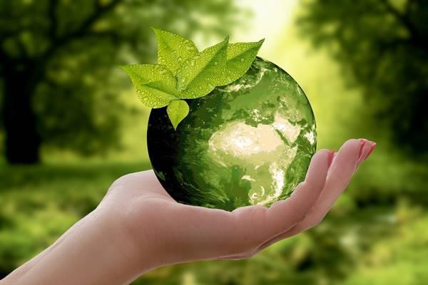natureza planeta verde ecologia