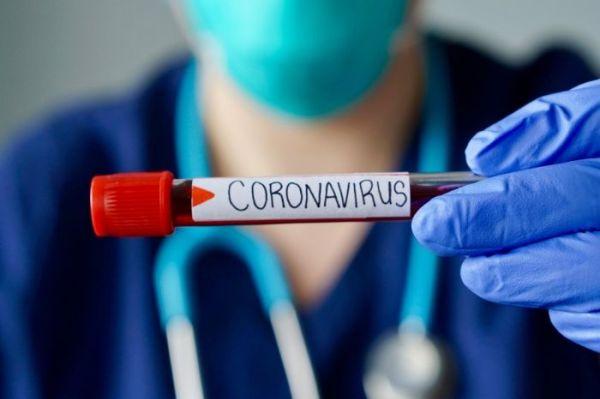 sangue coronavirus