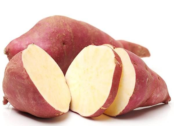 batata doce amazon