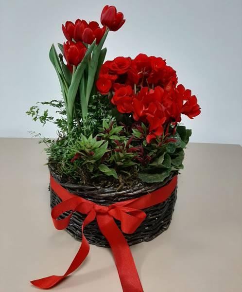 flores arranjo5