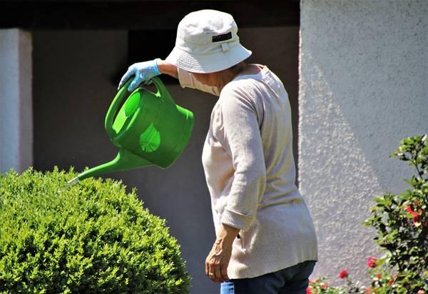 jardim jardinagem regar regador mulher idosa pasja1000 por Pixabay