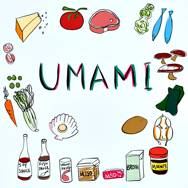 Umami-illustration- garlic delight